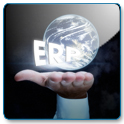 ERP in the palm of your hand
